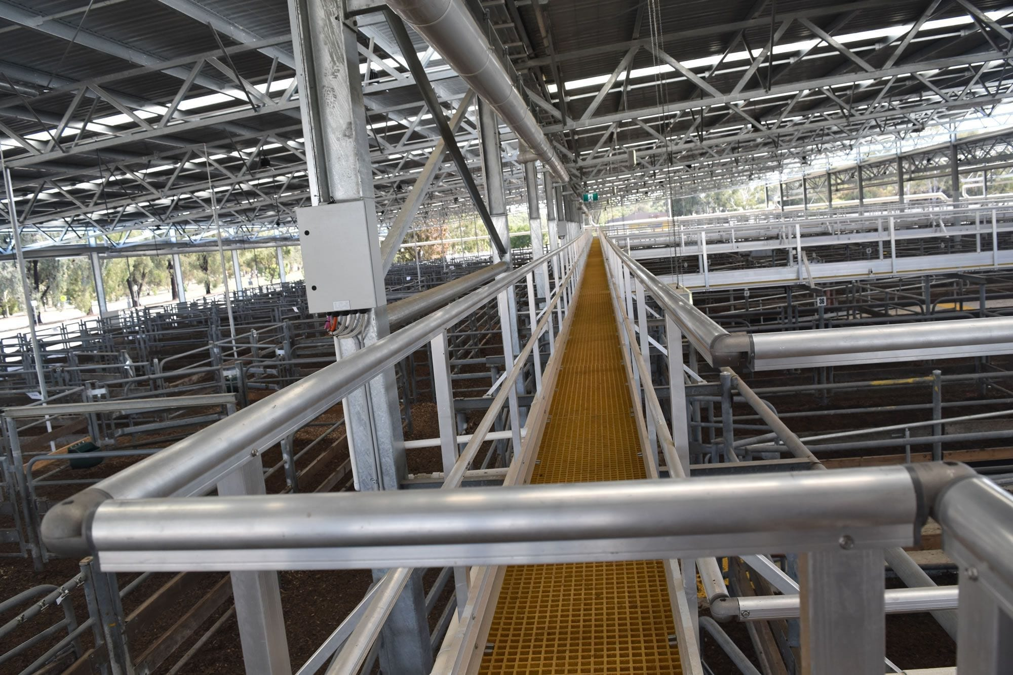 Walkway solution for livestock safety
